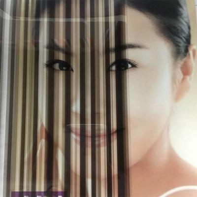 Self adhesive size 1.52*30m white-clear stripe commercial privacy decorative window tint film